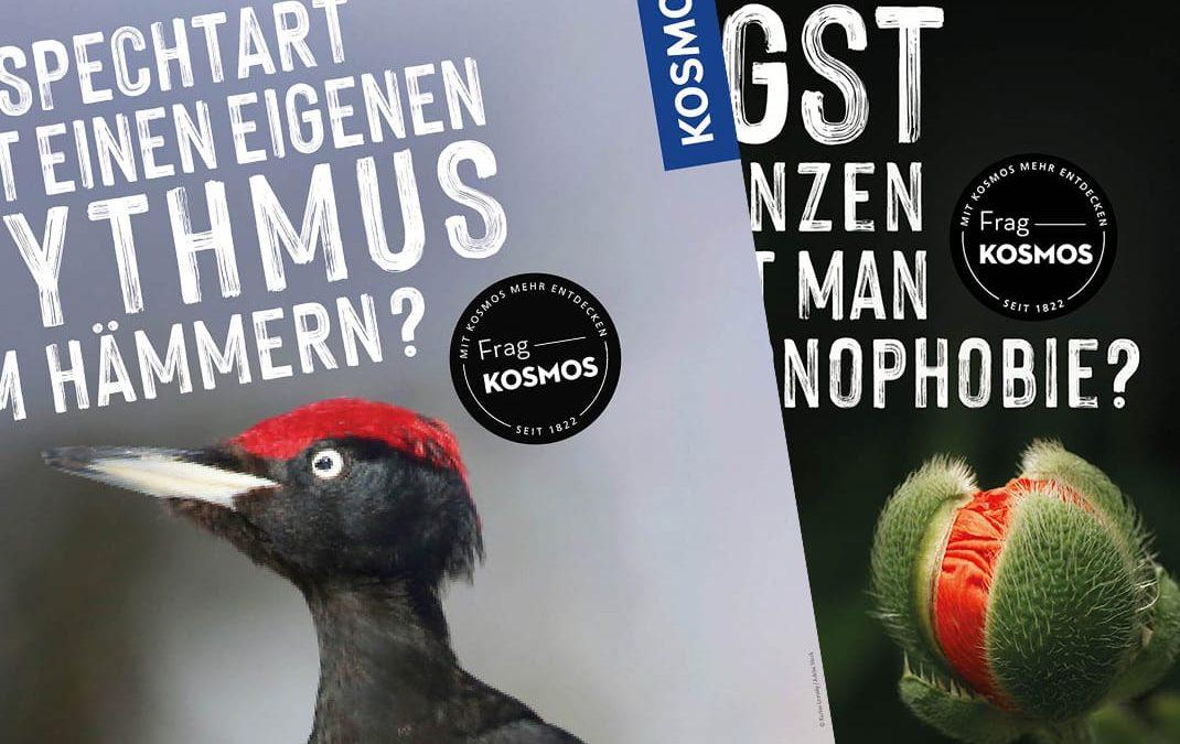 Social-Media-Kampagne für Kosmos-Verlag