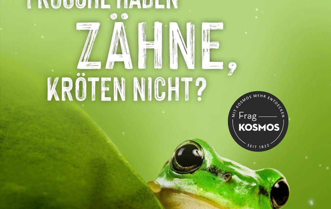 """Projekt: Animierte Banner für Kampagne """"Frag' Kosmos"""""""